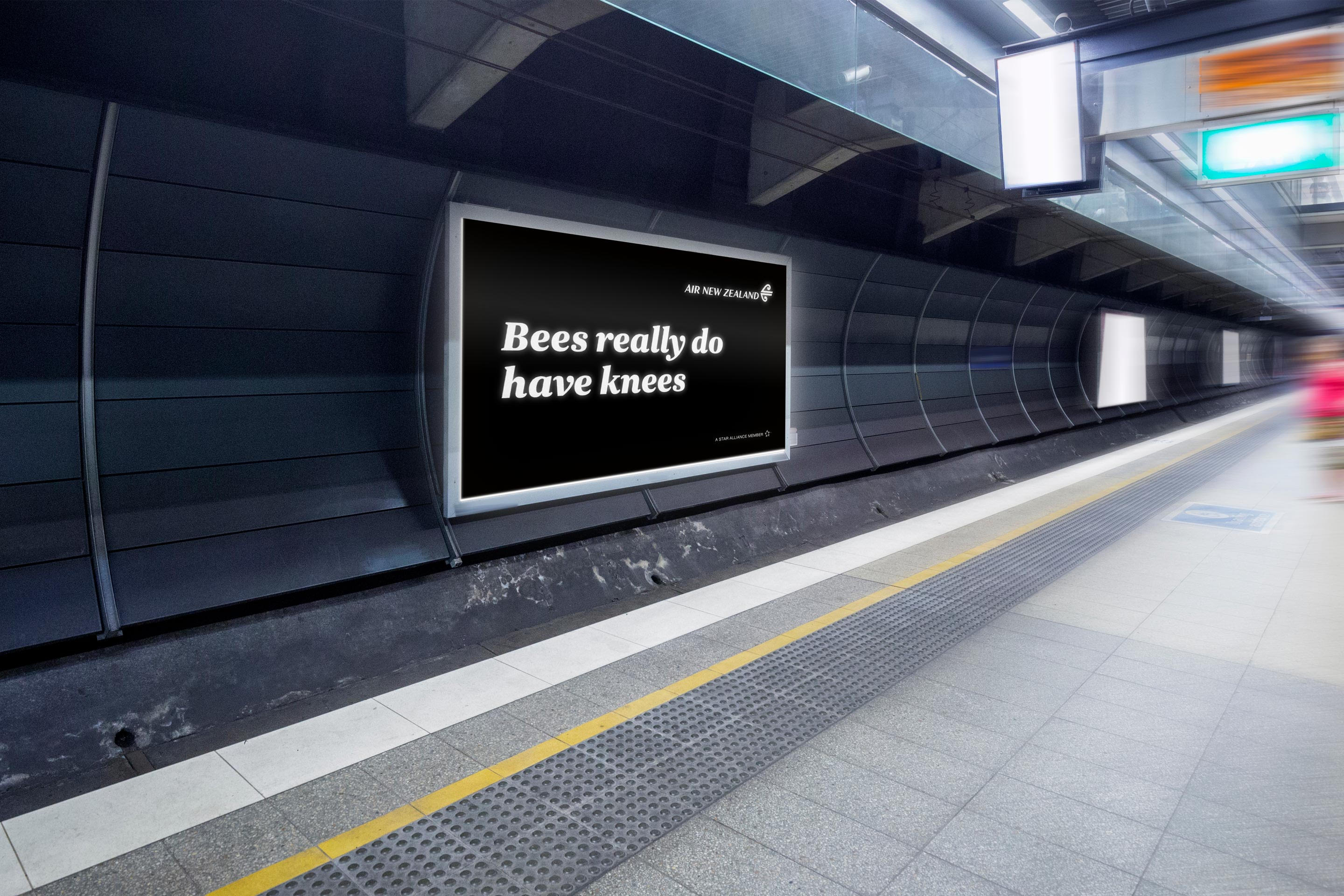 Air New Zealand Bet You Didn't Know