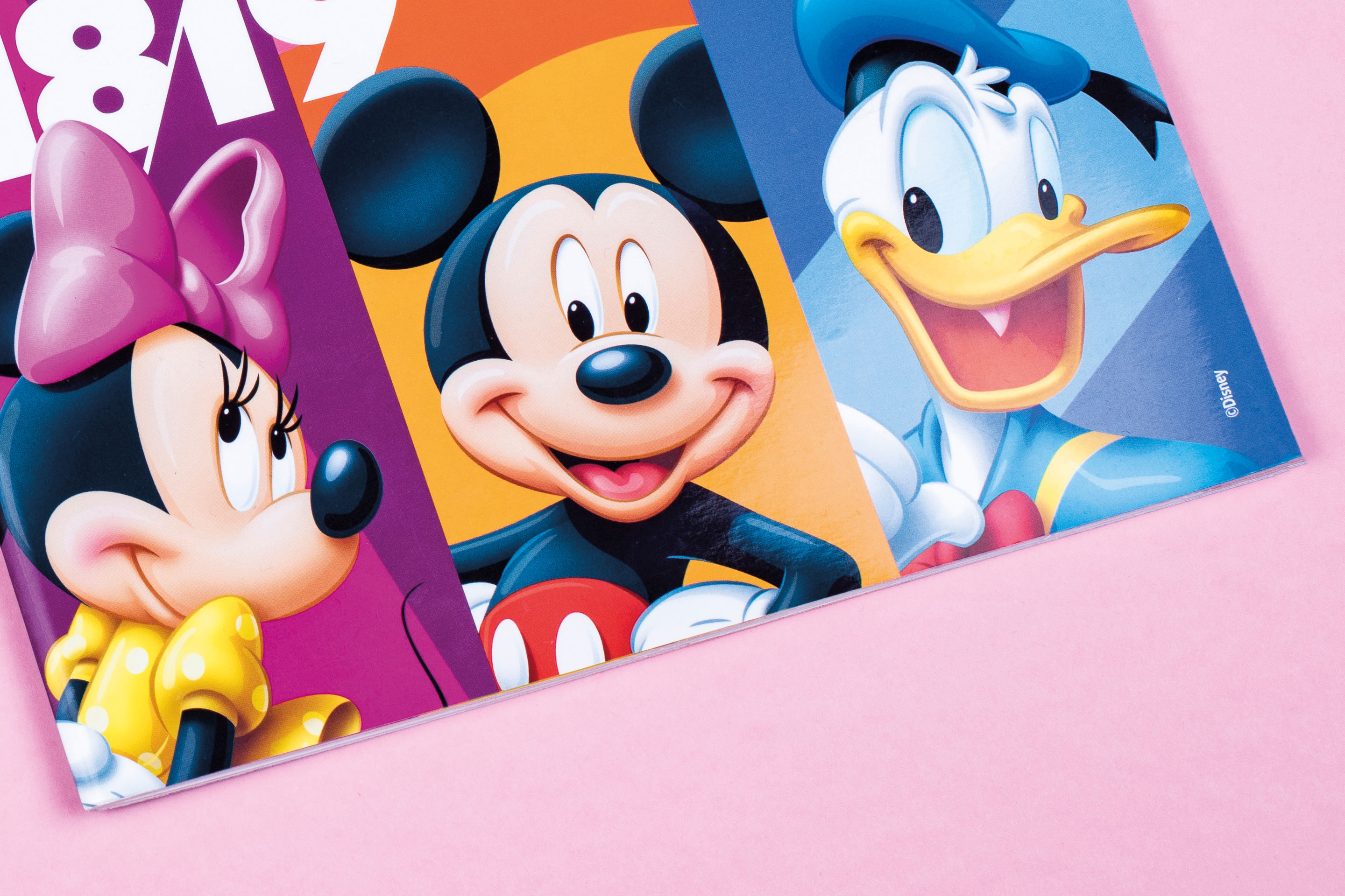 Disneys Travel Agent Guide  Work  Front Page